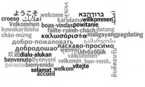 Welcome! - Please choose your language